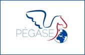 Pegase, la page de l'expatriation et des Français de l'étranger
